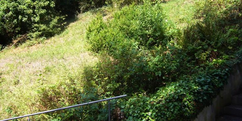 Seitlicher Zugang Grün